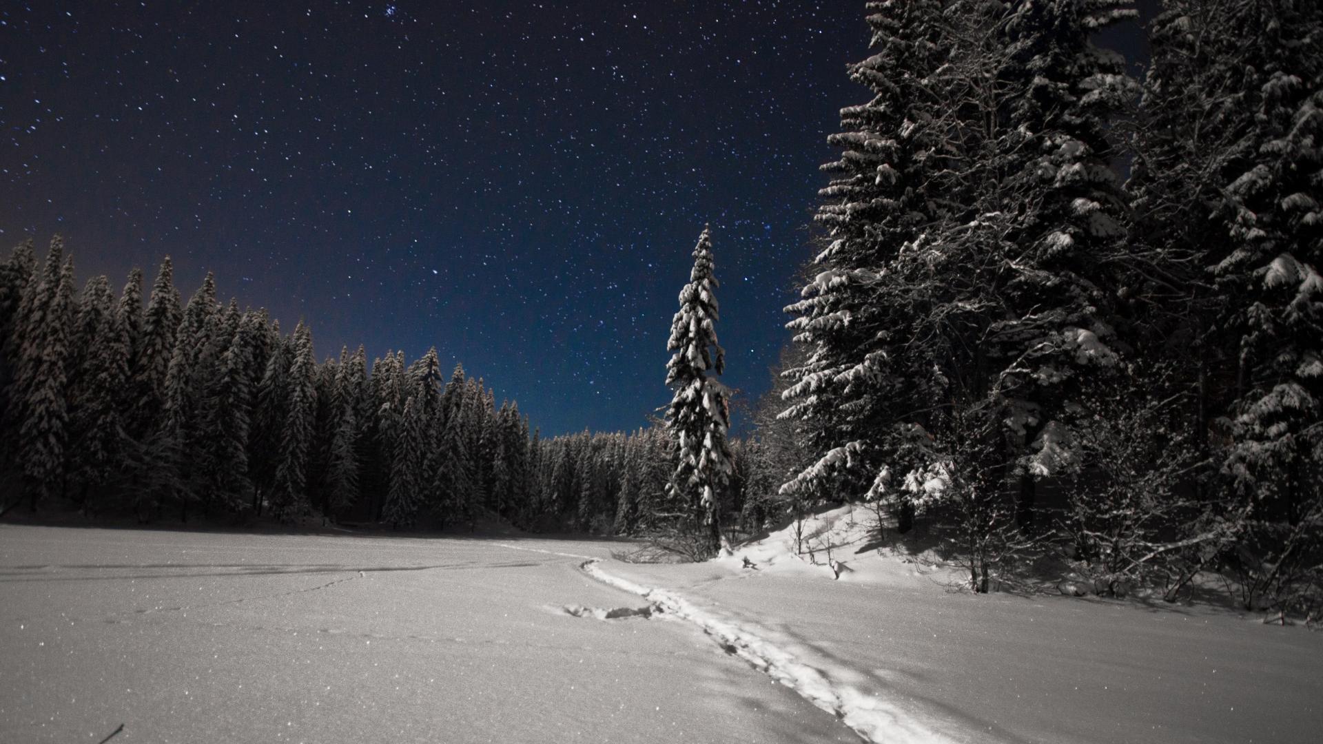 Хижина в лесу монстры картинки делимся вами
