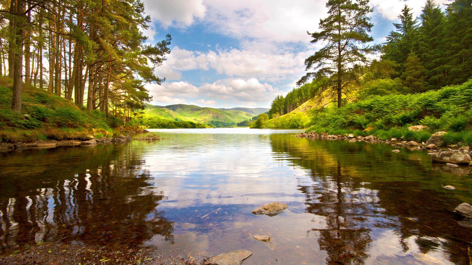 рассмотрев картинки на рабочий стол природа лес озера реки облака бесплатно хорошем