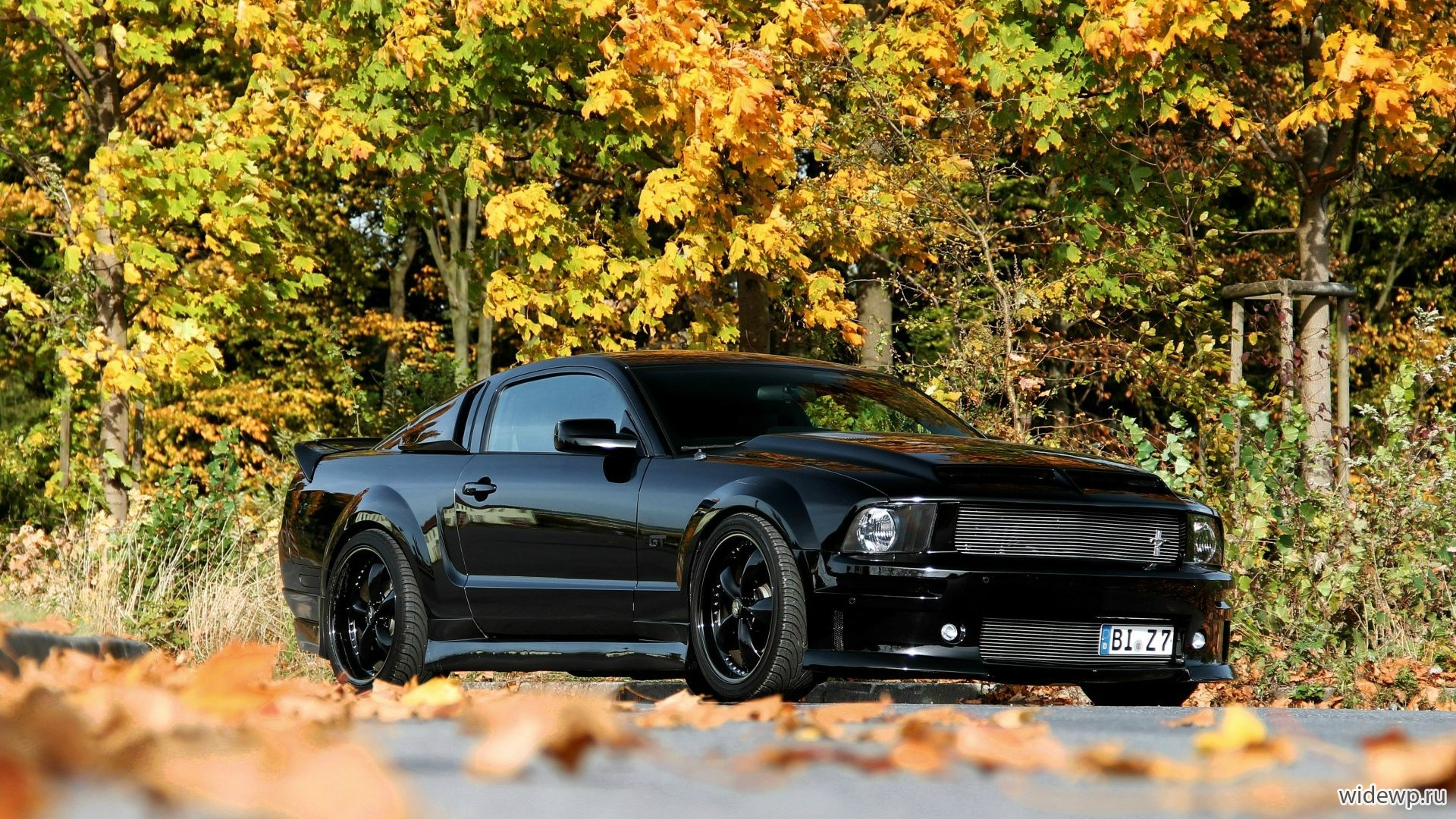 Автомобили Ford Mustang GT